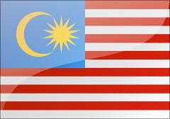 马来西亚旅游签证 [广州]
